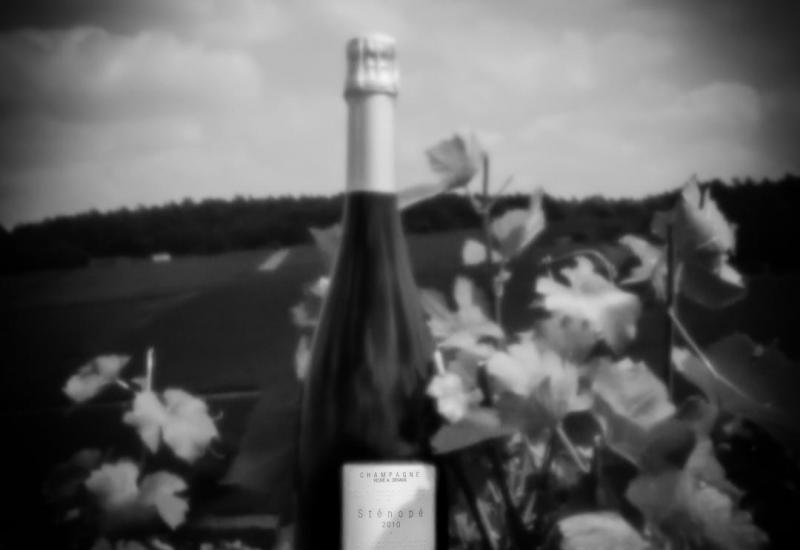 Champagne Sténopé 2010 ©Demoulin